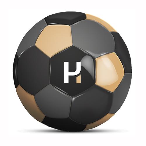 Werbeball Haug und Partner vierfarbiger Fußball mit Logo