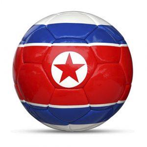 Länderball Nordkorea