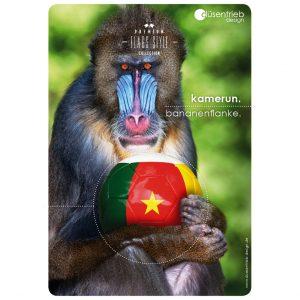 Plakat Kamerun Bananenflanke Affe mit Fußball