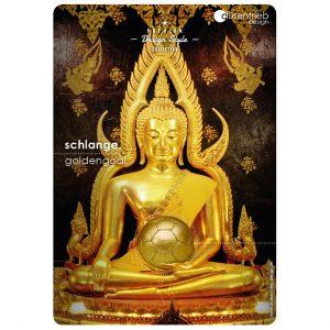 Plakat Schlange Goldengoal goldener Tempelschmuck mit Ball