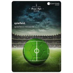 Plakat Spielfeld inklusive Desingball im Stadion